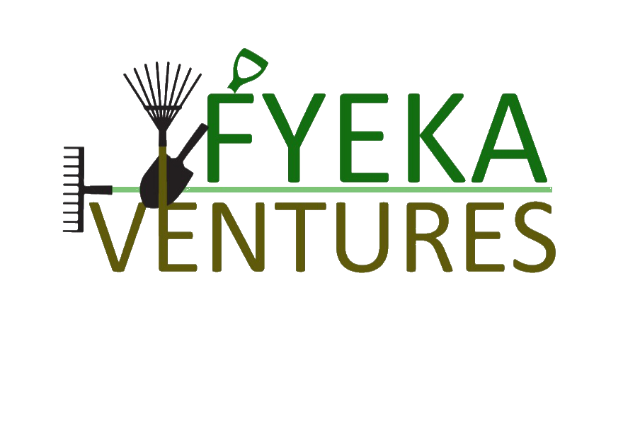 Fyeka Ventures Ltd